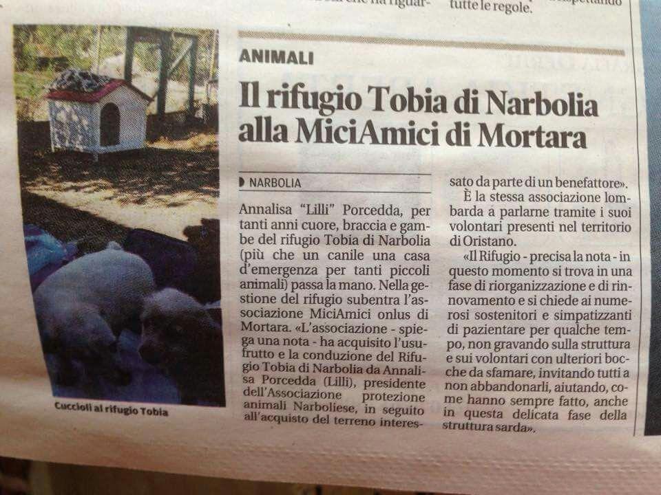 Il rifugio Tobia di Narbolia alla MiciAmici di Mortara