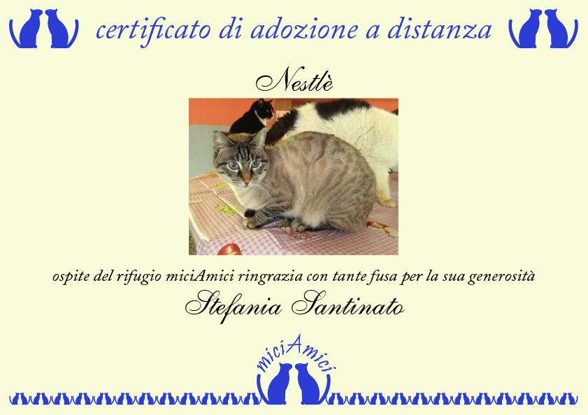 Esempio di certificato di adozione a distanza