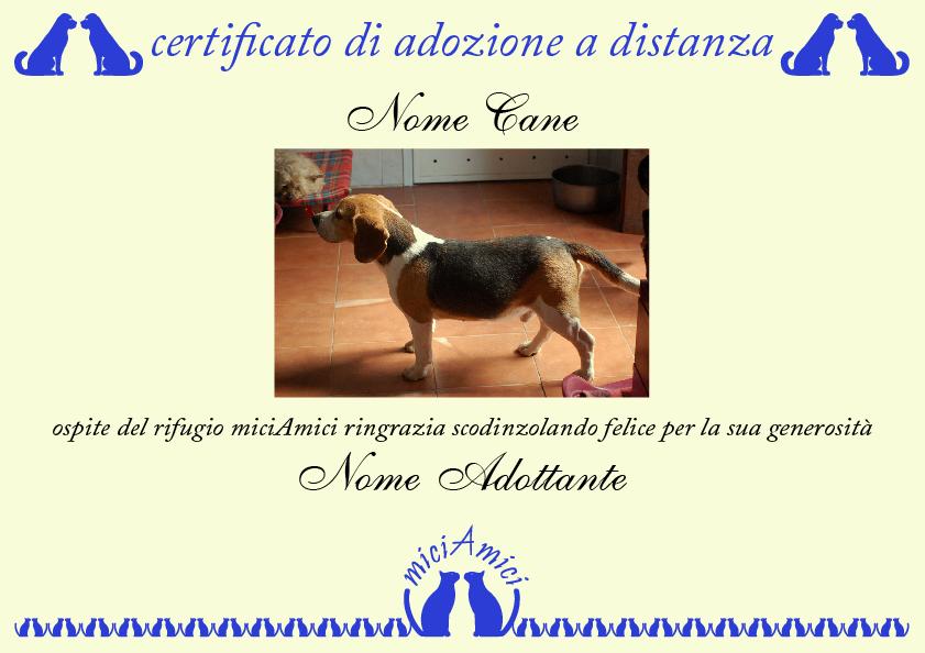 Esempio di certificato di adozione a distanza di un cane