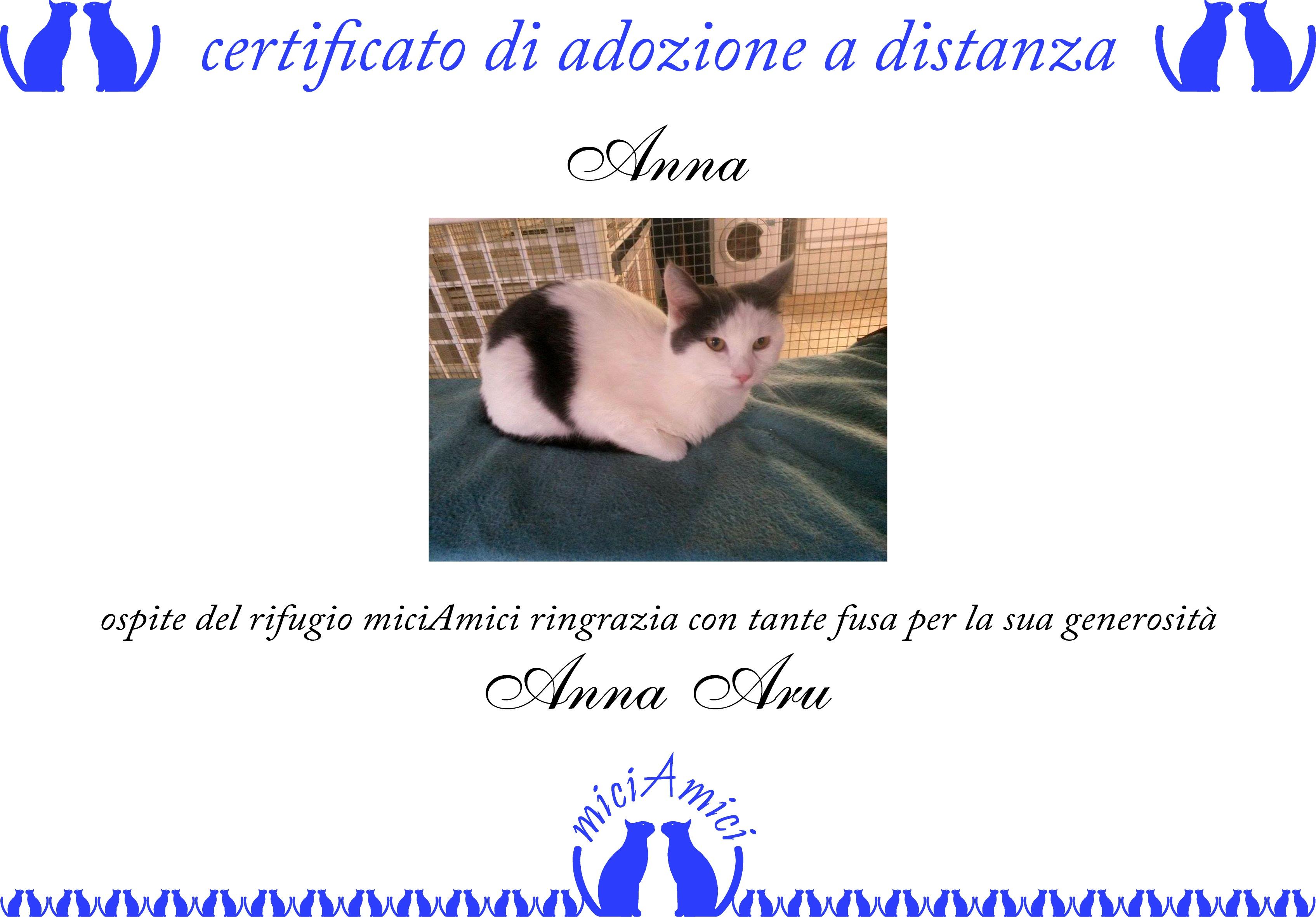 Esempio di certificato di adozione a distanza di un gatto